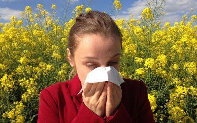 ¡Dichosas alergias!